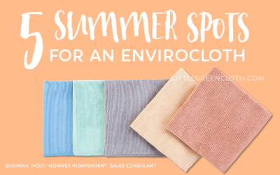 Summertime with Norwex: 5 Places I Keep an Enviro Cloth