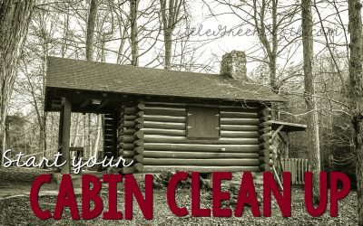 Norwex and the Outdoors: Cabin Clean Up