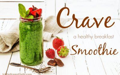 Everyday Healthy Smoothie Recipe