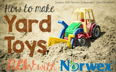 How to make Yard Toys NEW again with Norwex!!