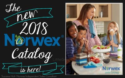 The NEW 2018 Norwex Catalog is HERE!
