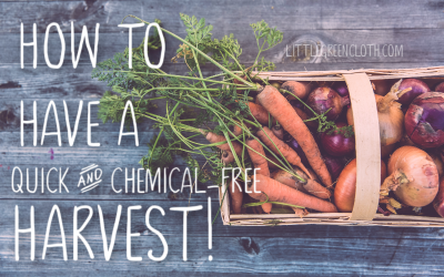 How to Have a Quick and Chemical-free Harvest!