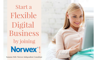 Start a Flexible Digital Business by Joining Norwex today!