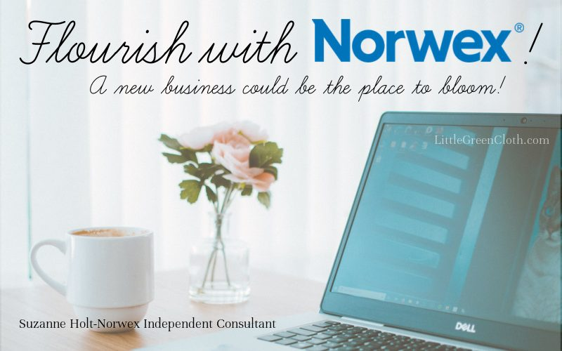 Flourish with Norwex- a new business could be the place to bloom!