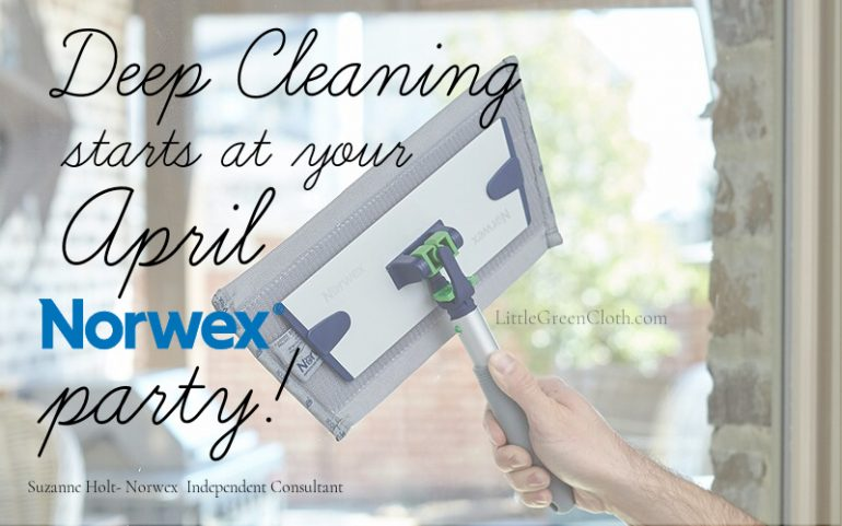 Earn All the Tools for a Quick and Green Spring Clean at your April Norwex Party!