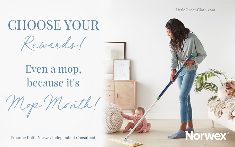 Choose from 2 Host Reward Packages in June (one is the Mop!)
