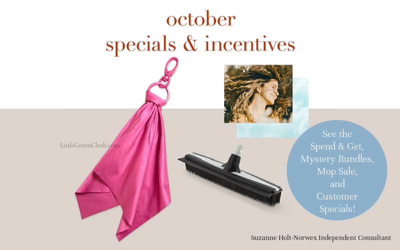 Don't Miss the Mystery Bundles, Mop Sale, and other Norwex Deals through October!